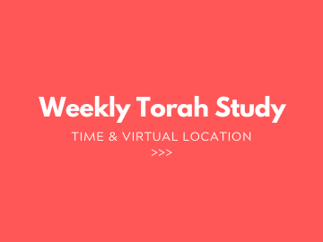 6 Weekly Torah Study