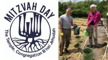 Mitzvah Day Info & Registration